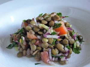 shambhus-green-lentil-salad-P1050302x500x375enh